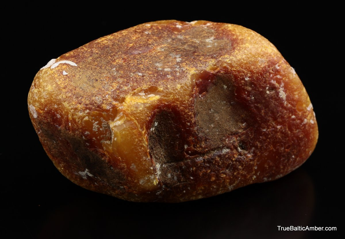 Large Genuine Baltic Amber Fossil Collectable Stone