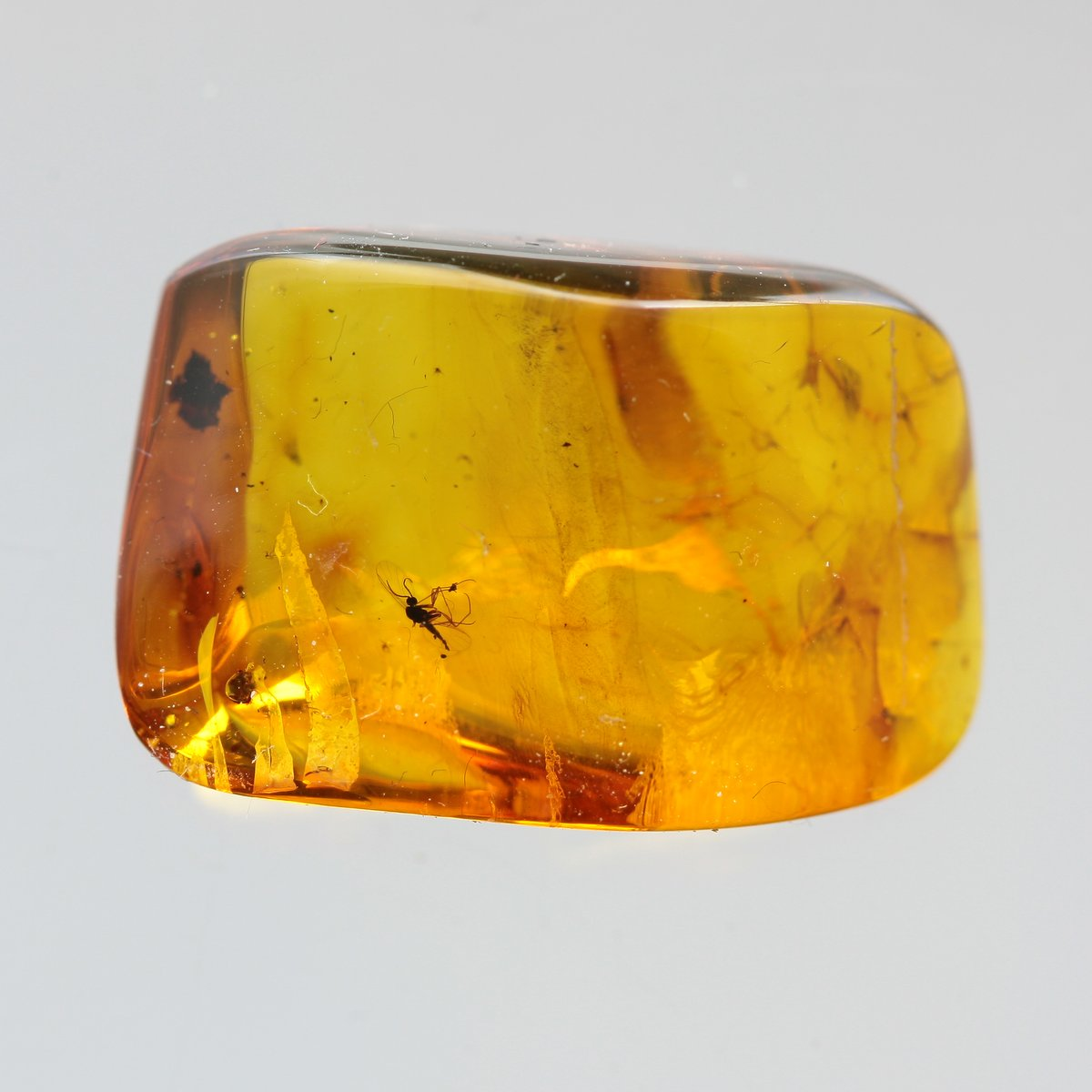 Amber Piece With Insect Inclusion Fossil inside Genuine Natural Baltic Amber piece Insects 3,8g 4219