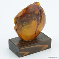 Vintage Baltic amber fossil stone w stand