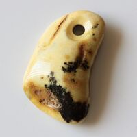 Baltic Amber Medallion pendant with hole