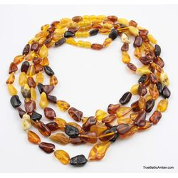 5 Multi Large BEANS Baltic amber adult wholesale necklaces
