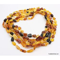 6 Multi Large BEANS Baltic amber adult wholesale necklaces