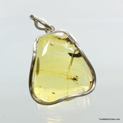 Large amulet Baltic amber silver pendant with insect inclusion 16g