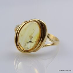 Baltic amber silver ring w gnat insect inclusion