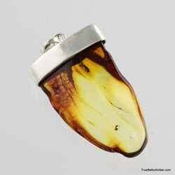 Baltic amber silver pendant w insect inclusion 10g