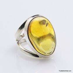 Baltic amber silver ring w insect inclusion