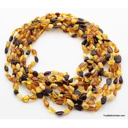 10 Multi BEANS Baltic amber adult wholesale necklaces 21in