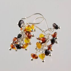 Grape bunch Baltic amber hook earrings