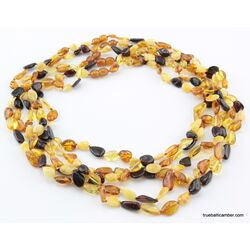 5 Multi BEANS Baltic amber adult wholesale necklaces