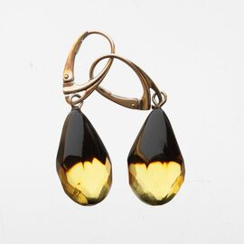 Faceted drops Baltic amber Silver Earrings