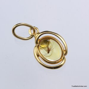 Gold Plated Baltic amber pendant with insect inclusion