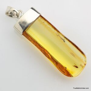 Baltic amber silver pendant w insect inclusion 8g