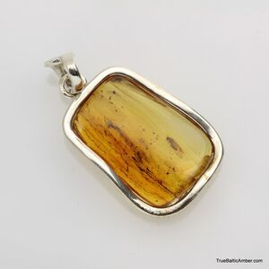 Baltic amber silver pendant w insect inclusion 7g