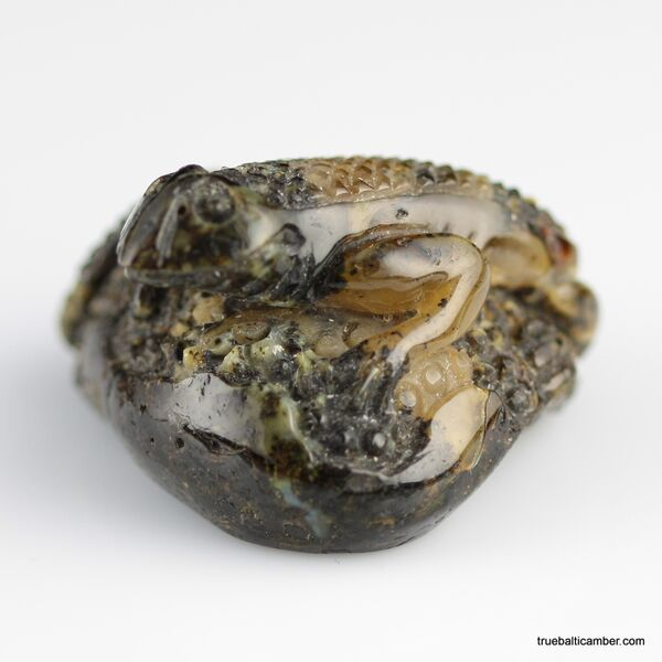 Carved Genuine BALTIC AMBER - Lizzard